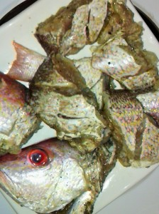 UNCOOKED SNAPPER SLICES FOR PAN-FRYING AND INPUT IN HOISIN SAUCE